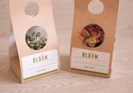 Plant holder packaging and sticker label print